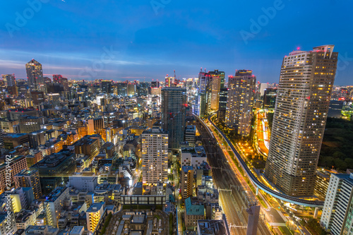 Tuinposter Tokio amazing view of tokyo skyline at sundown