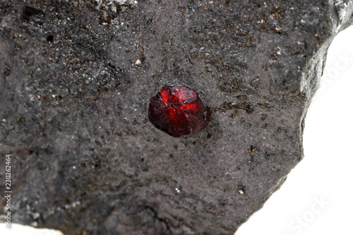 Tuinposter Macrofotografie Macro mineral stone garnet in the rock on a white background