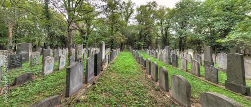 Foto op Canvas Begraafplaats Der alte jüdische Friedhof auf dem Zentralfriedhof in Wien