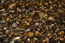 Schöne Kieselsteine Im Flussb...