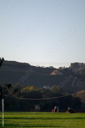 Foto op Plexiglas Grijze traf. landscape in the hills,italy,countryside,crop,field,sky,green,autumn,rural,agriculture,