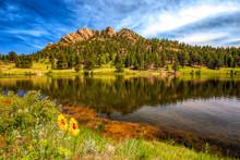Lily Lake Reflection Near Este...
