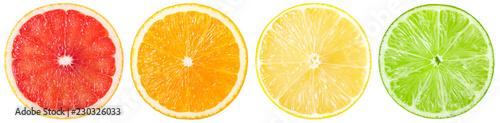 Fresh grapefruit, orange, lemon and lime