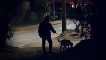 Paseando Al Perro Por La Noche