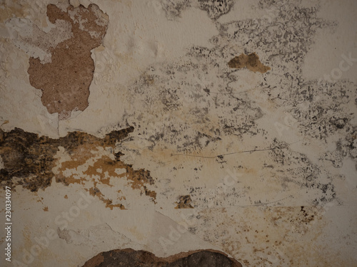 Black Mold And Mildew Stains On Wet Cellar Wall Due To Poor Ventilation Or Wrong Heating