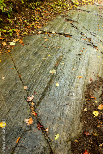 Valokuva  Glacial striations in bedrock along a Maine hiking trail.