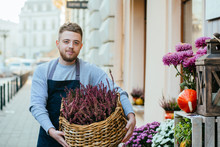 Florist Concept. Happy Florist Man Holding Basket With Vibrant Pink Common Heather (Calluna Vulgaris) Over City Street, Outoor Florist Salon. Business In Flower Shop. Make Someone Happy.
