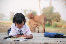 Thai Student Is Doing Homework.