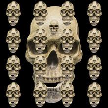 Skull Pattern On Black Background.  Black And White Design