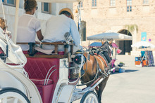 White Horse With A Carriage For The Tourists In The Harbor Of Chania City. Crete, Greece.