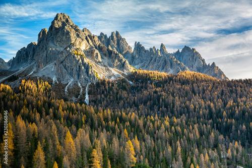 Papiers peints Vieux rose Forêt d'automne dans les Dolomites
