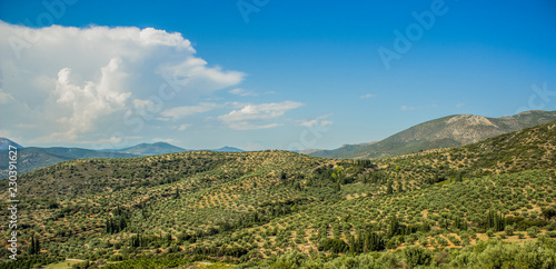 Foto op Aluminium Blauw summer forest mountain landscape panorama with bright blue sky