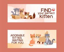 Pets Adopt Find Friendship Pos...