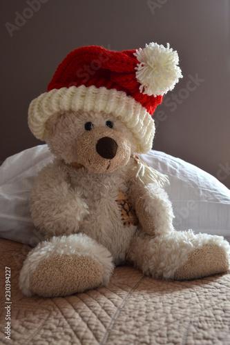 Fotografie, Obraz  Ours en peluche avec bonnet du père Noël, ourson Saint-Nicolas, fête de Noël, bo