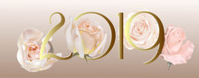 Happy New Year 2019 With Pink Roses