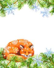 Fox Animal In Snow Flakes, Fir...