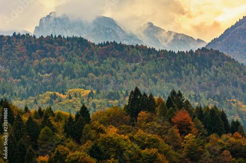 kolor-jesiennych-drzew-krajobraz-gorski