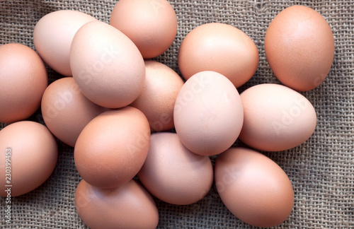 Hen eggs basket / fresh farmer's eggs