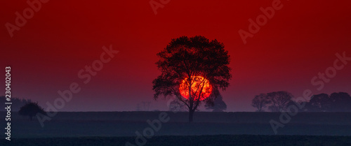 Keuken foto achterwand Rood paars SUNRISE - Autumnal fiery morning on the fields