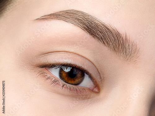 Fotografie, Obraz Close up view of beautiful brown female eye