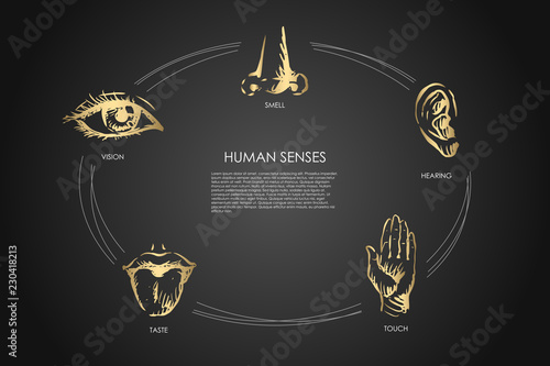 Foto  Human senses - vision, taste, touch, hearing, smell vector concept set