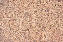 Straws Of Hay Background