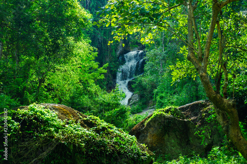 Foto auf AluDibond Wasserfalle The Mae Sa waterfall. it is beautiful on Doi Suthep at Chiang Mai in Thailand