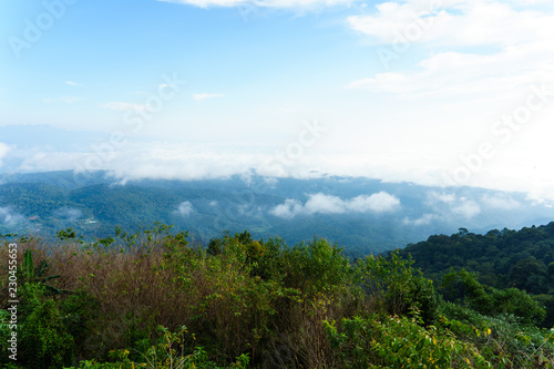 Deurstickers Pool Blue sky and cloud with meadow tree. Plain landscape background for summer poster of thailand.