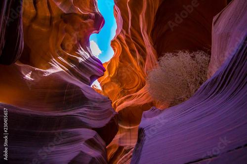 Photo Stands Antelope Antelope Canyon