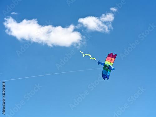 Fotografie, Obraz  Kite Flying