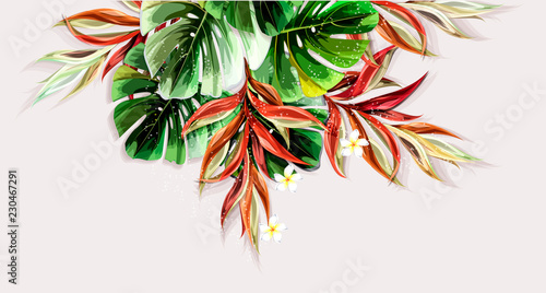 Foto  Tropical plants with Tropical flowers