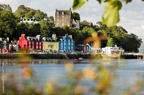 Cuadros en Lienzo Tobermory town, capital of the Isle of Mull in the Scottish Inner Hebrides, Scot
