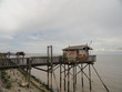 Cabane de pêcheur sur la gironde