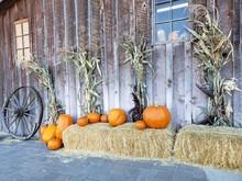 An Autumn Decorative Harvest D...