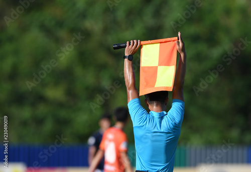 Photo Assistant referee hold flag , substitution signal.