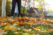 The cleaning of the fallen foliage in the garden by a sunny autumn day.