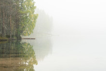 Trees Being Reflected On A Body Of Water Through The Foggy Air