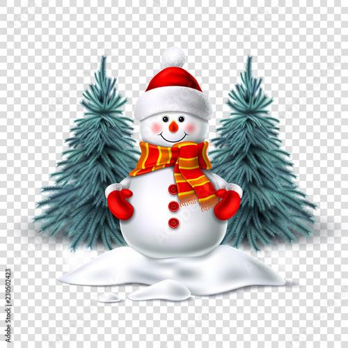 Vector cute realistic snowman in mittens scarf hat Fototapeta