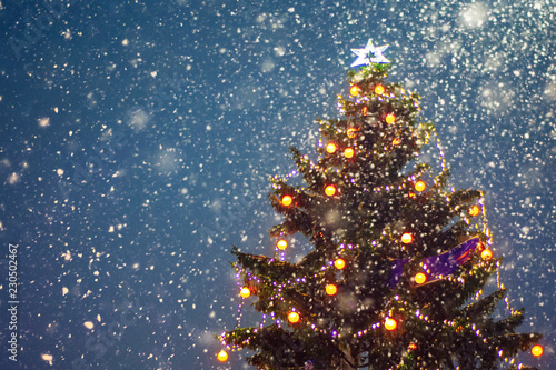 Poster Bomen Illuminated christmas tree at night with falling snow and copy space