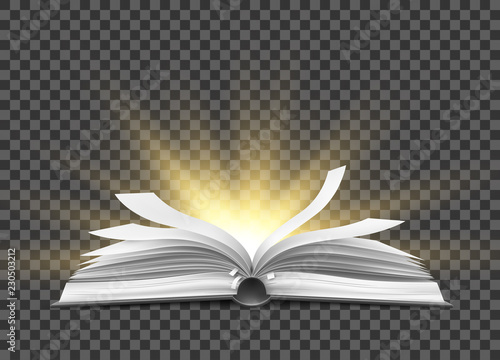 Leinwand Poster Vector realistic open book with fluttering pages