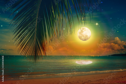 Foto op Aluminium Centraal-Amerika Landen Full moon with stars on caribbean beach.