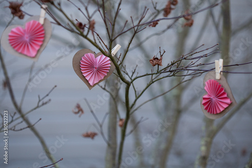 Paper valentines hang on bare branches outside
