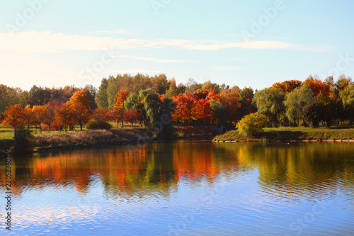 Aluminium Prints Dark grey Beautiful autumn landscape with golden foliage, blue sky and lake
