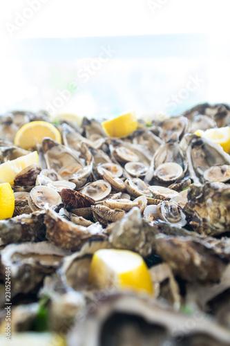 Fotografie, Obraz  Crostacei freschi con limone, vongole, telline, ostriche.