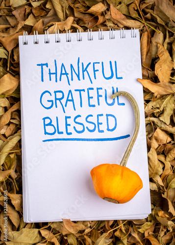 thankful, grateful, blessed  spiritual words Canvas Print