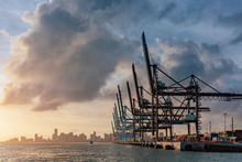 Cranes Of The Port Of Miami And Skyline Of Downtown Miami At Sunset, In Florida, USA