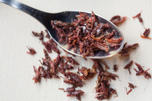 Spoon Of Chapulines, Toasted Grasshoppers