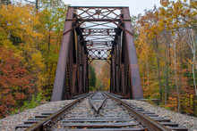 Railway Bridge Into The Fall Trees