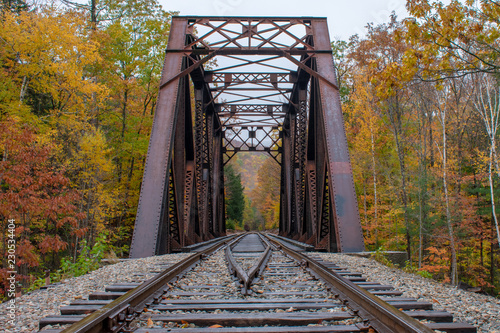 Railway bridge into the fall trees