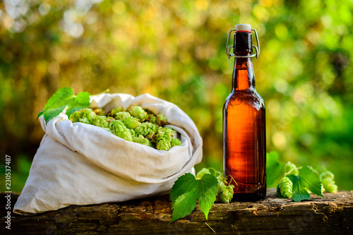 Foto op Aluminium Bier / Cider buds hops in a burlap bag with Beer bottle